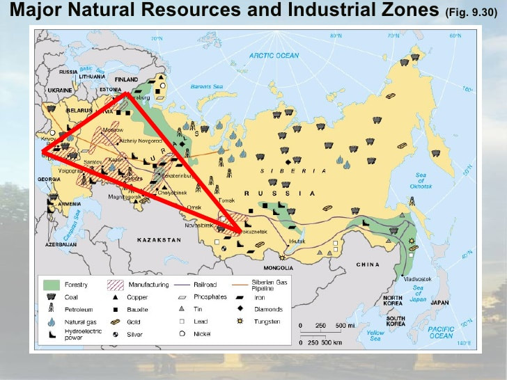 the russian timber resources